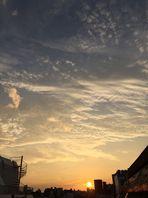 綺麗な夕日が見れた日は良い日(*´ω`)